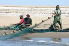 1280px-Fishermen_Walvis_Bay_Namibia_Luca_Galuzzi_2004