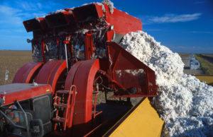 Baumwoll-Erntemaschine