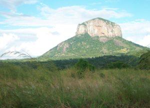 Mozambico2010-_risorse_naturali_Gilè_e_Pebane-_contesto-COSV_(3)