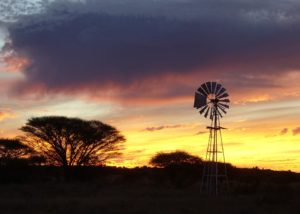 Wind Mill Africa Sunset Acacia Trees Farm