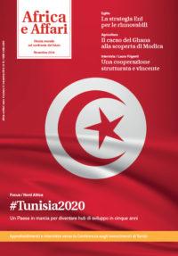 A cinque anni dalla rivoluzione, l'economia della Tunisia è ancora fragile. La crescita c'è ma non sembra sufficientemente forte per riuscire a intaccare fenomeni quali la disoccupazione, la povertà e l'ineguaglianza. Tuttavia molti segnali di speranza arrivano soprattutto dalla politica tunisina che appare realmente determinata ad affrontare in maniera congiunta le sfide che attendono il Paese.